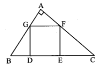 Maharashtra Board Class 10 Maths Solutions Chapter 1 Similarity Problem Set 1 25