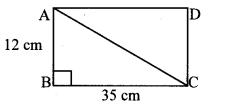 Maharashtra Board Class 10 Maths Solutions Chapter 2 Pythagoras Theorem Practice Set 2.1 7
