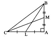 Maharashtra Board Class 10 Maths Solutions Chapter 2 Pythagoras Theorem Problem Set 2 10