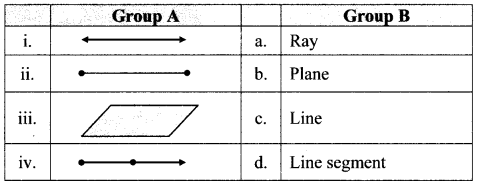 Maharashtra Board Class 6 Maths Solutions Chapter 1 Basic Concepts in Geometry Practice Set 1 3