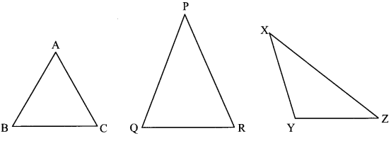 Maharashtra Board Class 6 Maths Solutions Chapter 15 Triangles and their Properties Practice Set 36 5