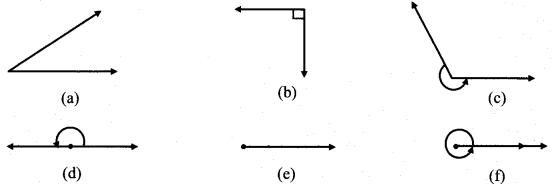 Maharashtra Board Class 6 Maths Solutions Chapter 2 Angles Practice Set 2 1