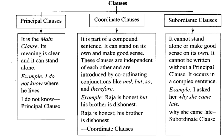 Clauses Exercises With Answers for Class 11