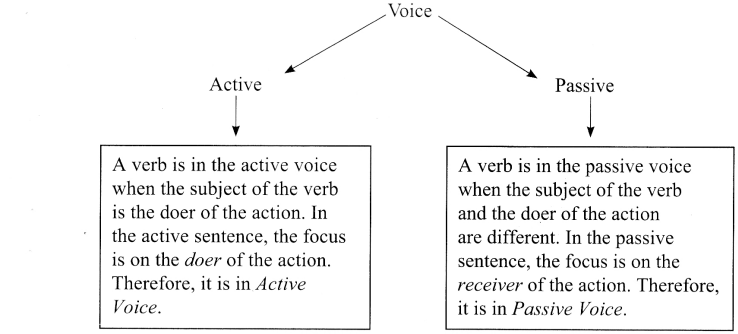 Active And Passive Voice Exercises for Class 11