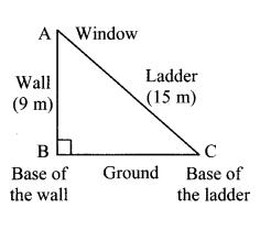 Maharashtra Board Class 7 Maths Solutions Chapter 13 Pythagoras' Theorem Practice Set 48 4