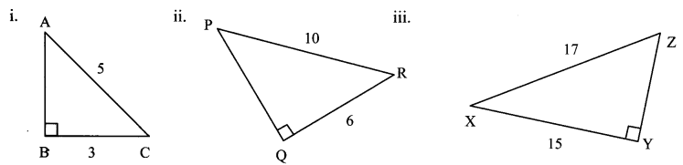 Maharashtra Board Class 7 Maths Solutions Chapter 13 Pythagoras' Theorem Practice Set 48 8