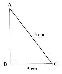 Maharashtra Board Class 7 Maths Solutions Chapter 13 Pythagoras' Theorem Practice Set 48 9