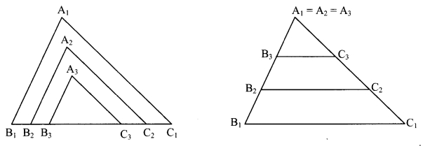 Maharashtra Board Class 9 Maths Solutions Chapter 3 Triangles Problem Set 3 22