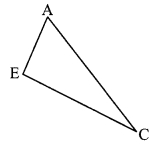 Maharashtra Board Class 9 Maths Solutions Chapter 3 Triangles Problem Set 3 3